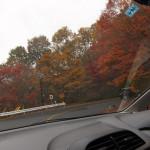 日光まで紅葉狩りに来たのなら日塩もみじラインまで足を伸ばすことをオススメ!紅葉があまりに綺麗で感動しました!