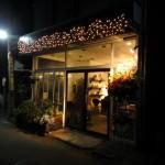 大好きなレストラン「クーカイ」が茅ヶ崎駅南口の近くに移転したので早速行ってきた!変わらずおいしい料理に満足!