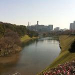 初めての皇居ランニング!思ったよりも起伏があったけど、東京のど真ん中を走れる幸せを実感した!!